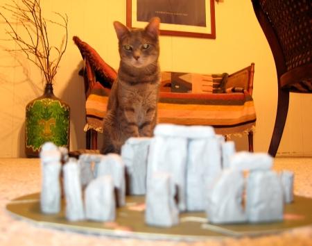 cat henge 2